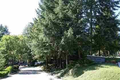 1240-falcon-drive-upper-eagle-ridge-coquitlam-19 at 43 - 1240 Falcon Drive, Upper Eagle Ridge, Coquitlam