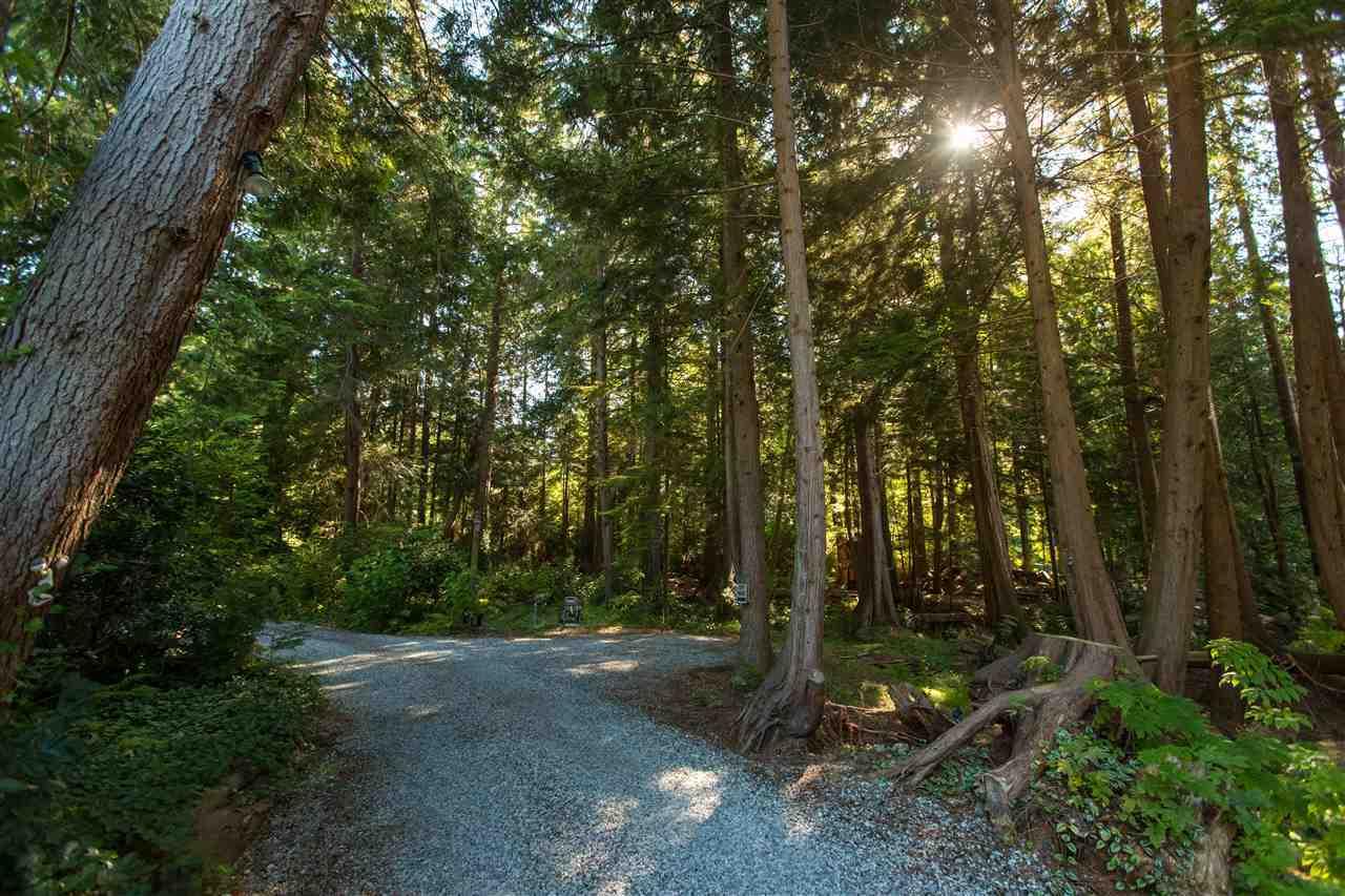 3757-beach-avenue-roberts-creek-sunshine-coast-35 at 3757 Beach Avenue, Roberts Creek, Sunshine Coast