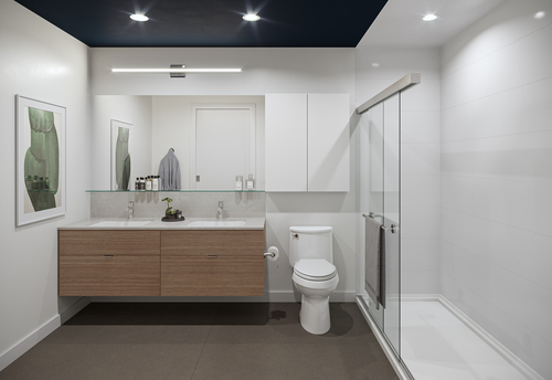 One Shaughnessy Bathroom - Port Coquitlam V9 at 2446 Shaughnessy Street, Central Pt Coquitlam, Port Coquitlam