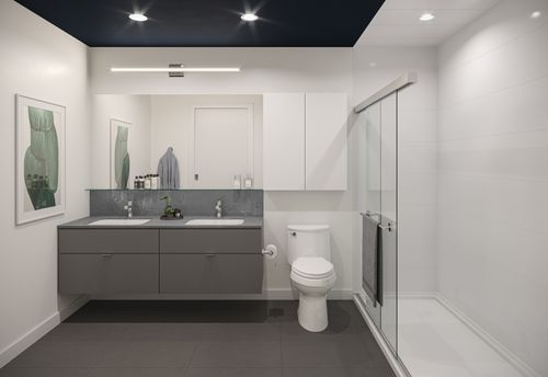 bathroom-rendering-for-two-shaughnessy-colour-combination-6-min at 2428 Shaughnessy Street, Central Pt Coquitlam, Port Coquitlam