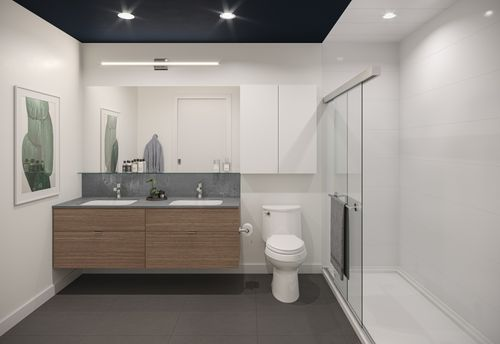 bathroom-rendering-for-two-shaughnessy-colour-combination-9-min at 2428 Shaughnessy Street, Central Pt Coquitlam, Port Coquitlam
