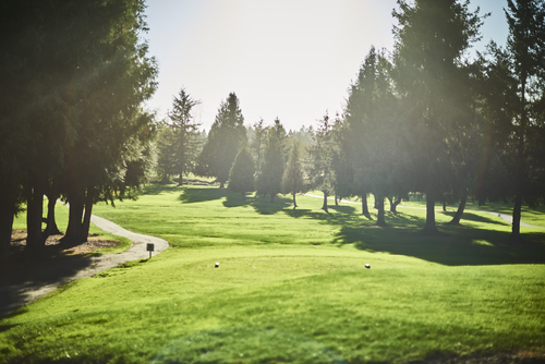 the-links-residences-golf-course at 7979 152 Street, East Newton, Surrey