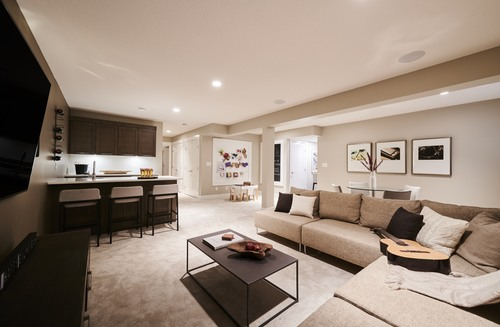the-links-residences-basement-01 at 7979 152 Street, East Newton, Surrey