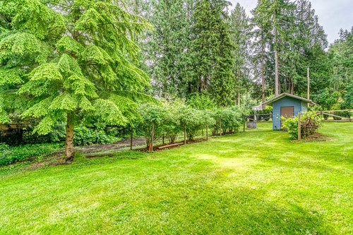 24133 61 Avenue, Salmon River Blue Berries at 24133 61 Avenue, Salmon River, Langley