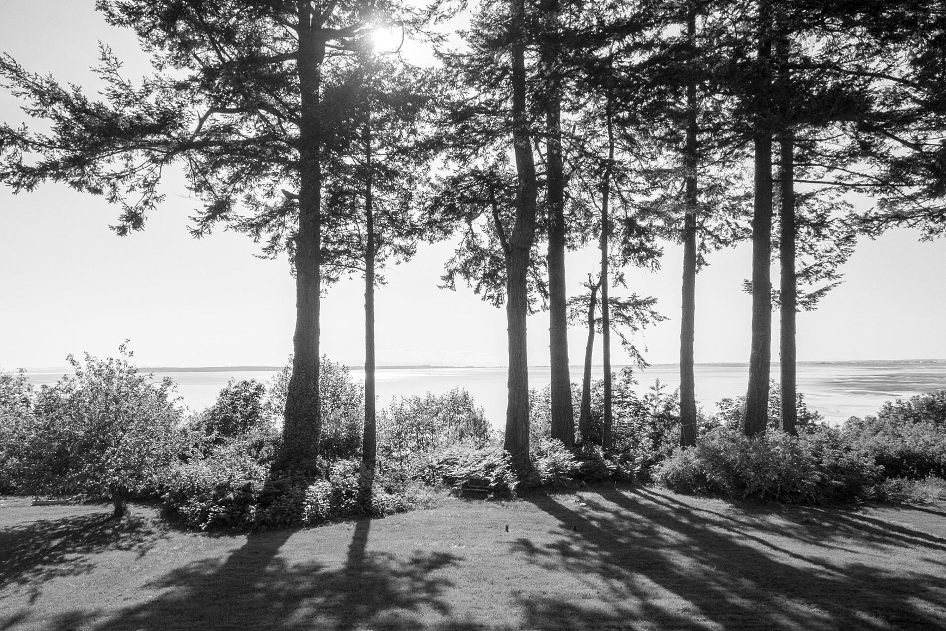 1673 Ocean Park Road, Crescent Bch Ocean Pk., South Surrey White Rock 2
