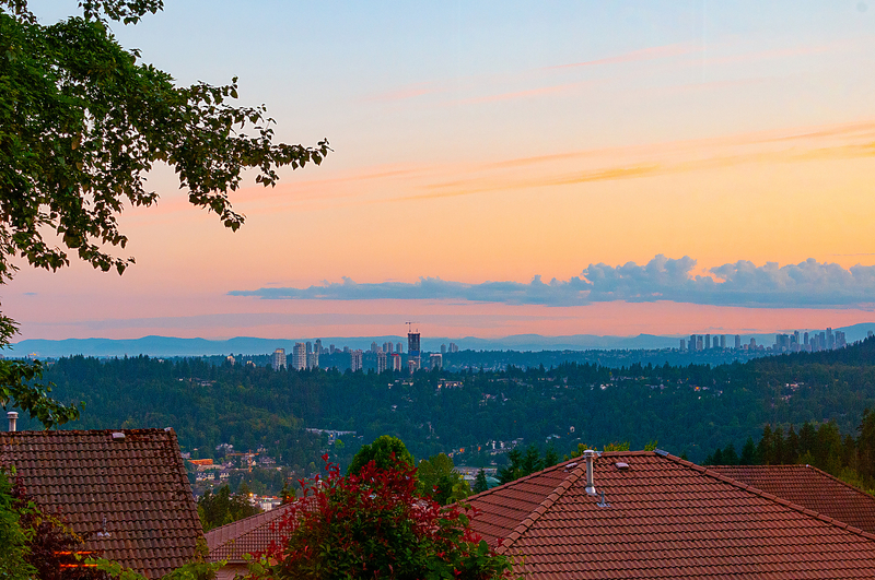 019 at 20 Chestnut Way, Heritage Woods PM, Port Moody