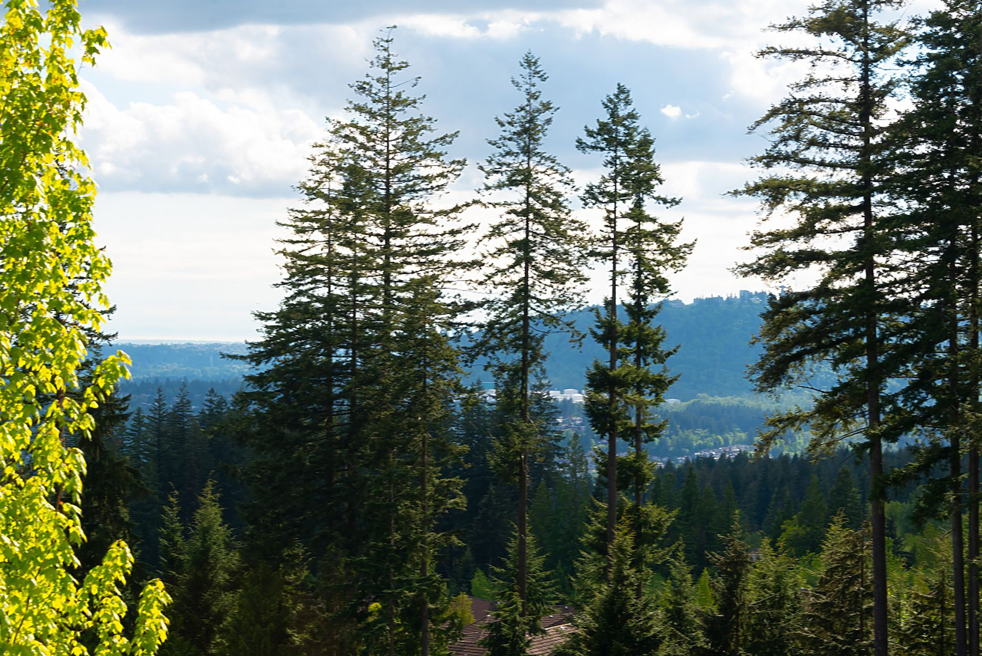 043 at 91 - 55 Hawthorn Drive, Heritage Woods PM, Port Moody