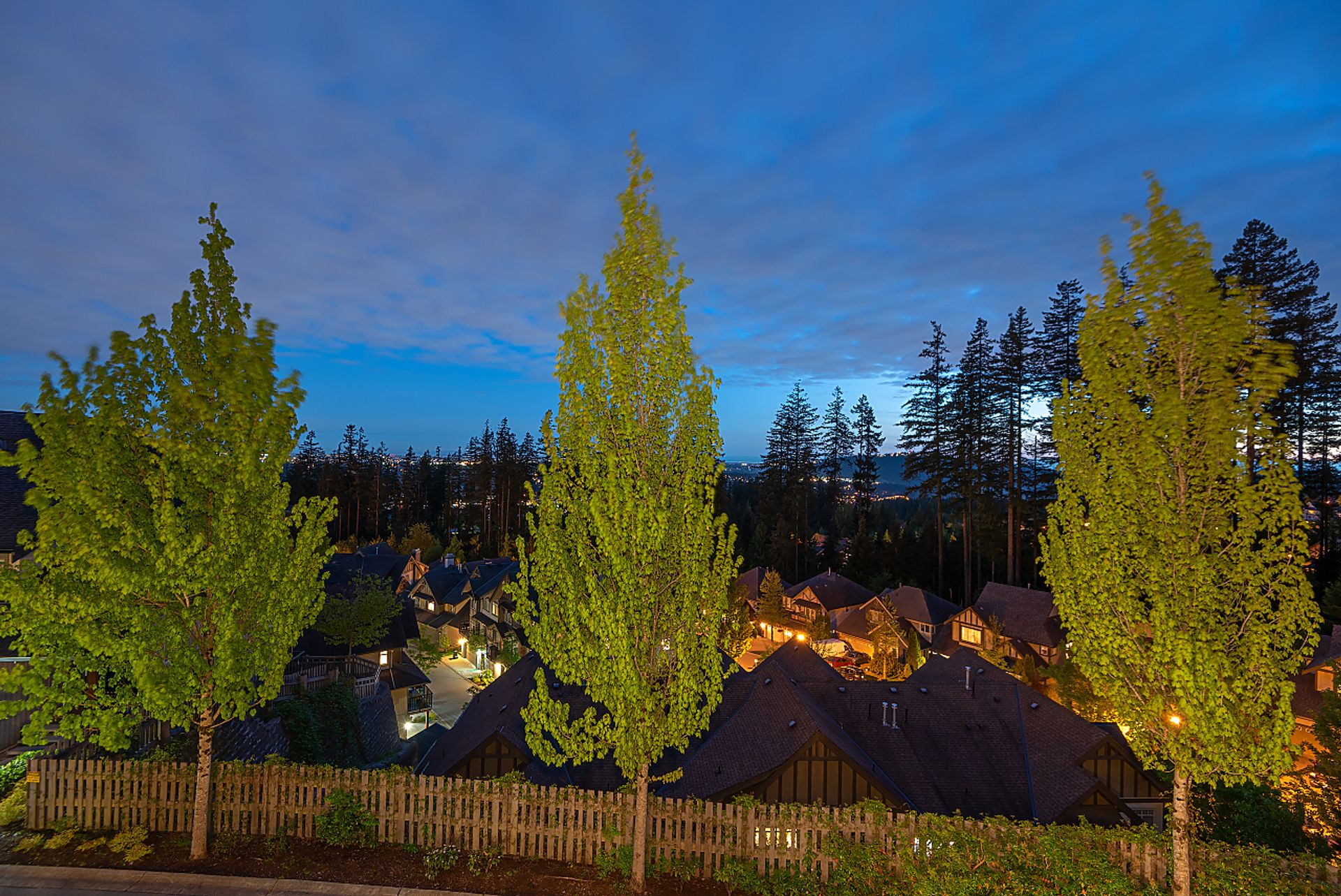 view at 91 - 55 Hawthorn Drive, Heritage Woods PM, Port Moody