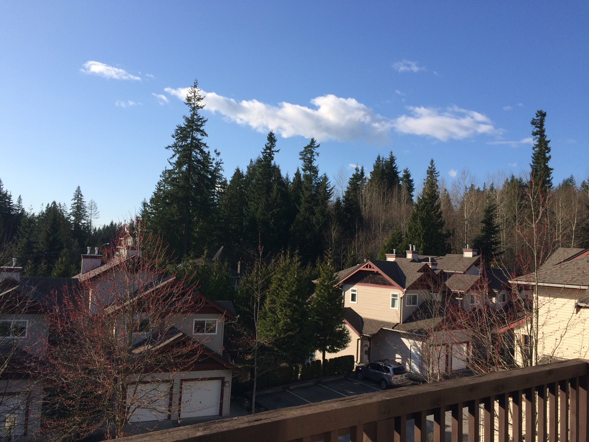 view-21 at 21 - 15 Forest Park Way, Heritage Woods PM, Port Moody