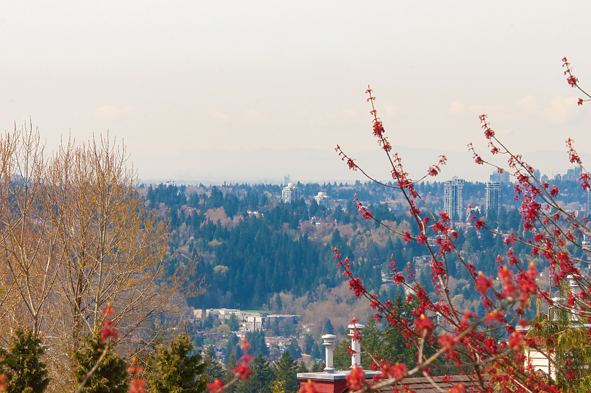 030 at 33 - 15 Forest Park Way, Heritage Woods PM, Port Moody