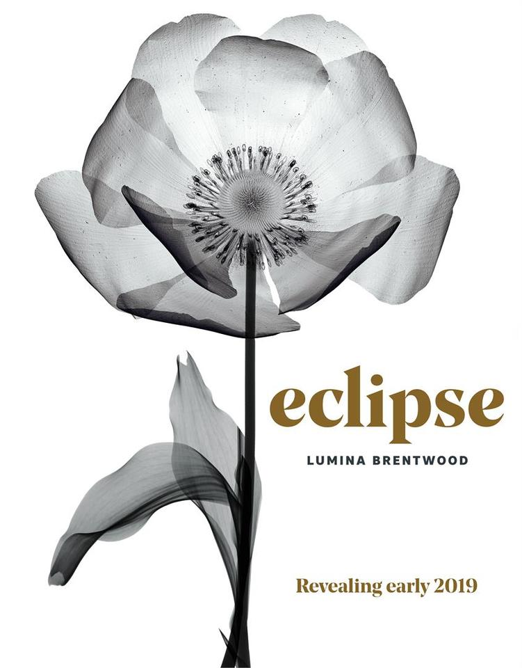 eclipse-brentwood at Eclipse - Lumina (2463 Beta Avenue, Brentwood Park, Burnaby North)