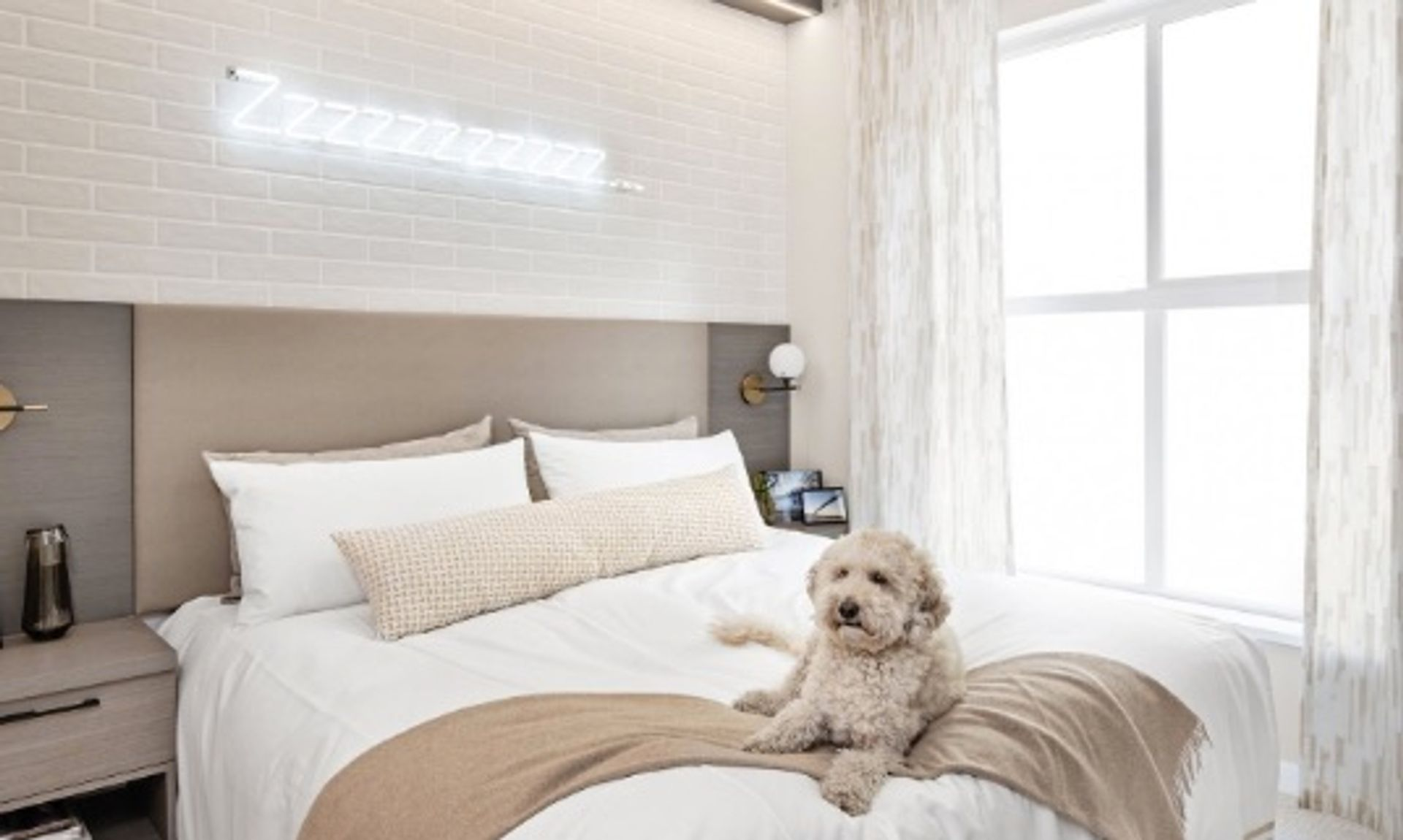 cardinal-bedroom-with-dog at Cardinal ( Adler Avenue, Coquitlam West, Coquitlam)