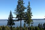 untitled-18 at 8 - 3085 Deer Ridge Close, Deer Ridge WV, West Vancouver
