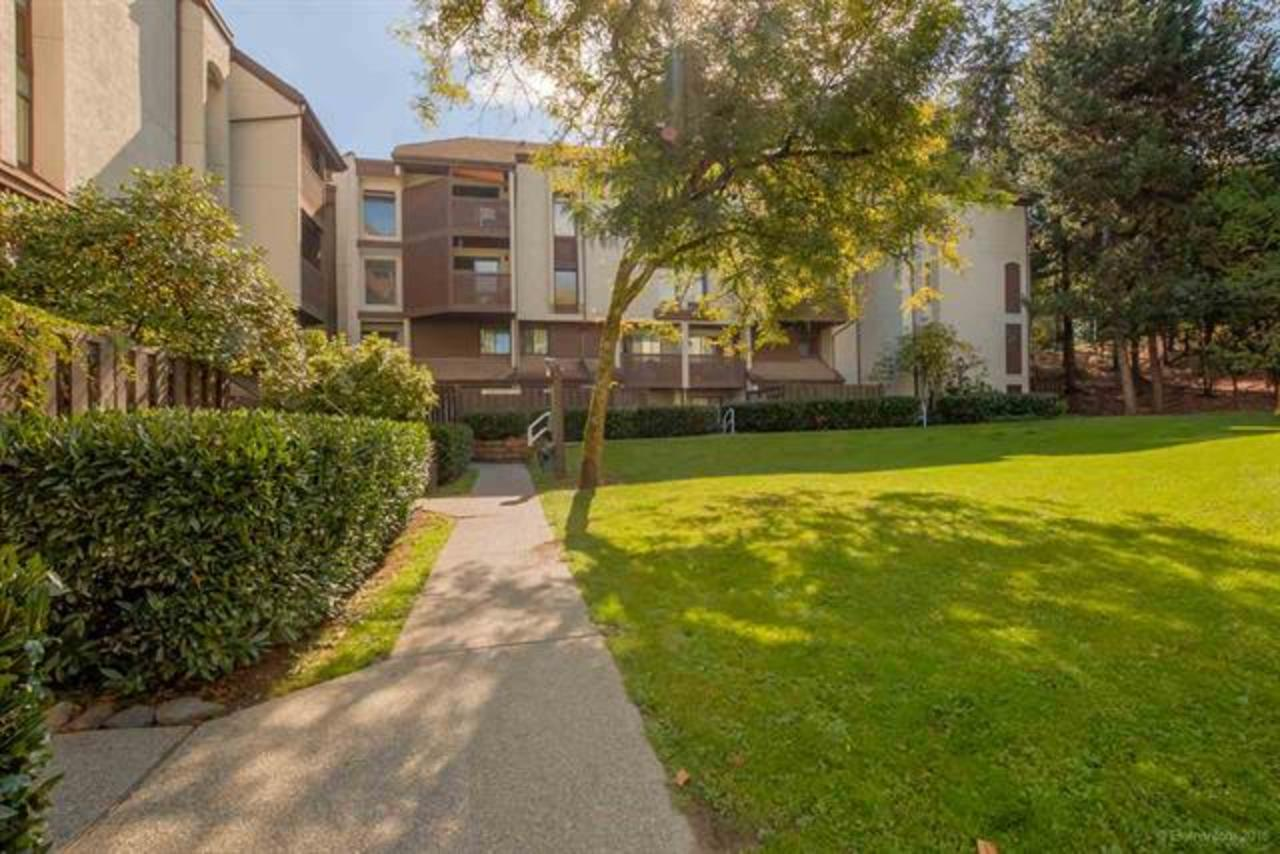 Garden Courtyard at 311 - 340 Ginger Drive, Fraserview NW, New Westminster