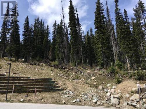 110-snow-mountain-place-pe-apex-mountain-hedley-apex-05 at 110 Snow Mountain Place, Apex Mountain (hedley), Apex