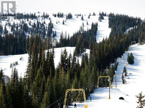 209-330-strayhorse-road-pe-apex-mountain-hedley-apex-mountain-resort-22 at 209 - 330 Strayhorse Road, Apex Mountain (hedley), Apex