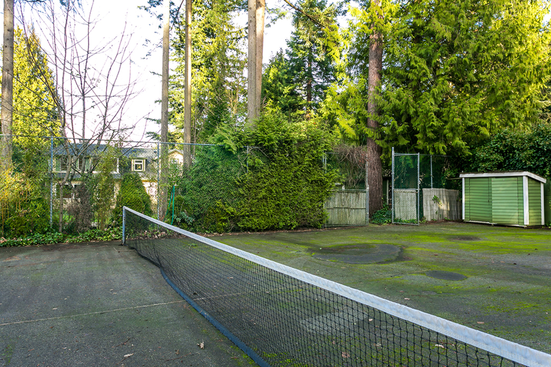 1J6A7374-1 at 4756 West 4th Avenue, Point Grey, Vancouver West