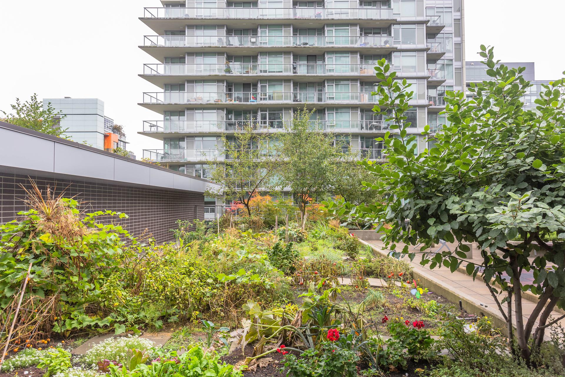 1j6a6953 at 356 - 168 West 1st, False Creek, Vancouver West