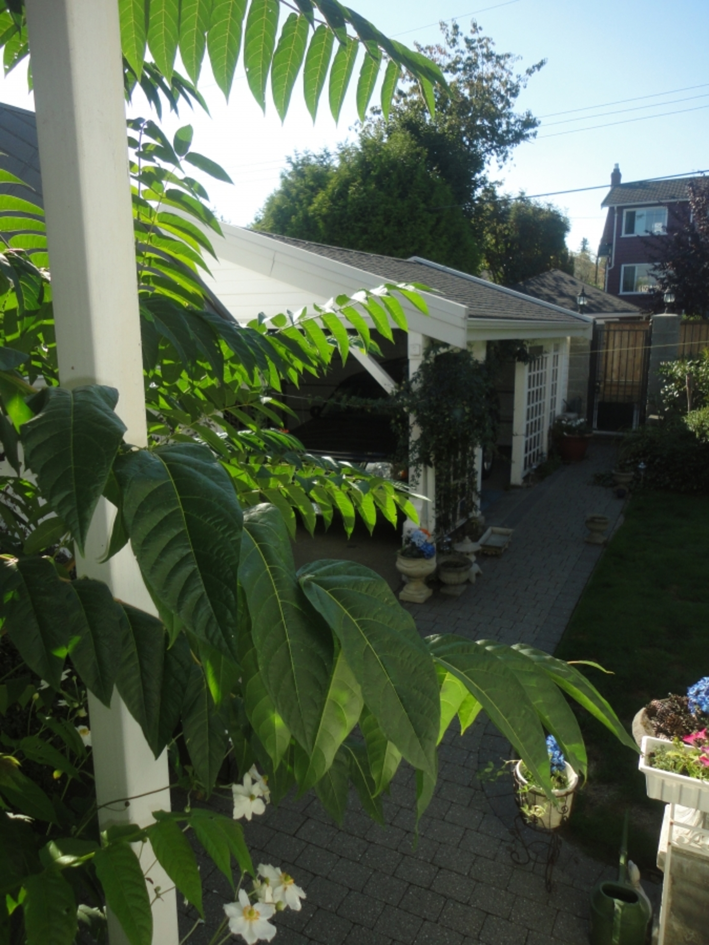 Front at Address Upon Request, South Cambie, Vancouver West