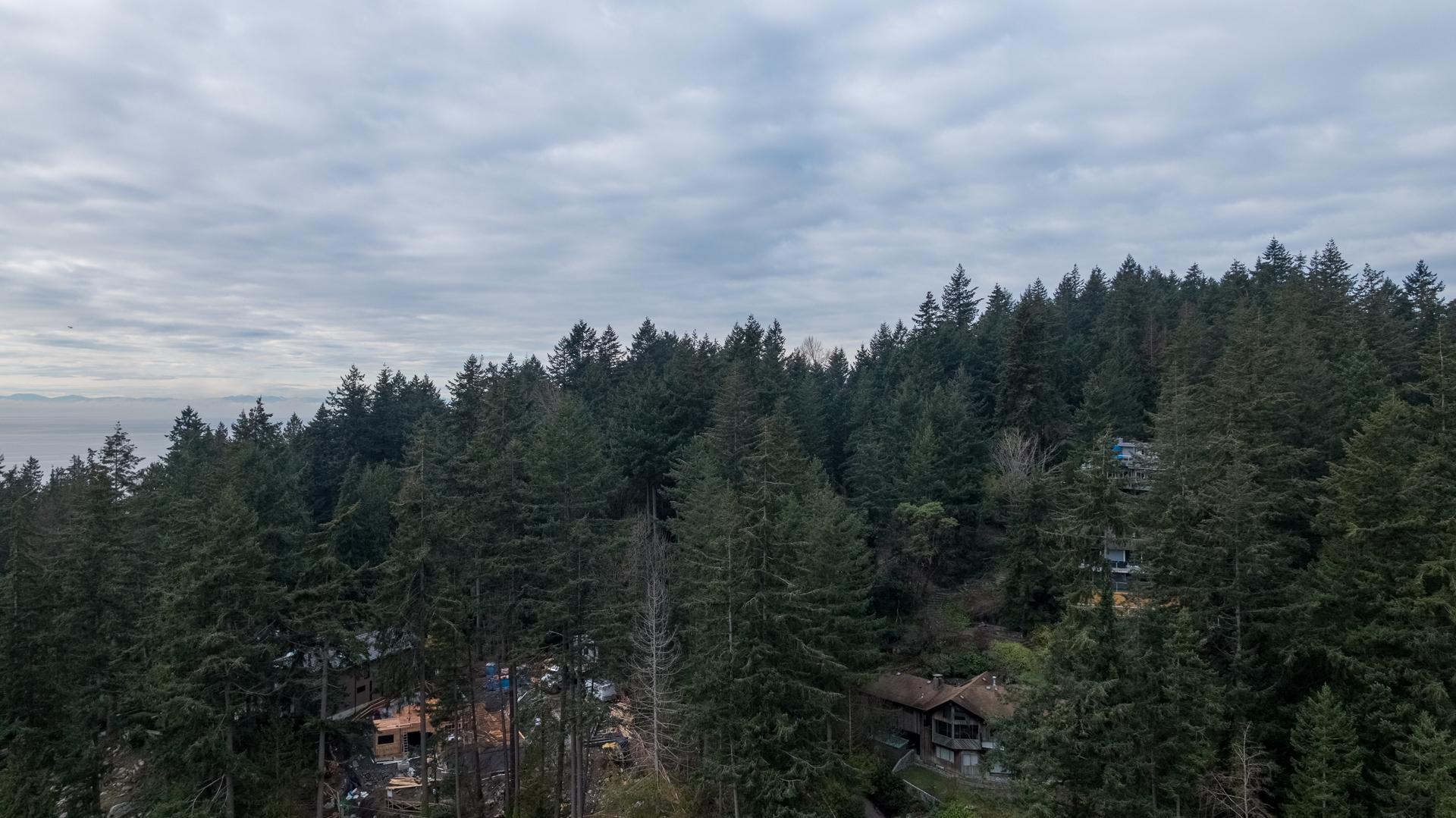 449-hillcrest-st-aerial-360hometours-25 at 449 Hillcrest Street, Westmount WV, West Vancouver