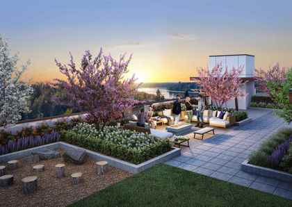 rooftop-garden at #401 - 11718 224th Street, West Central, Maple Ridge