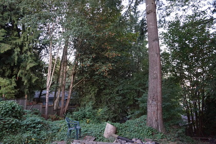 backyard at 32230 Buffalo Drive, Mission BC, Mission