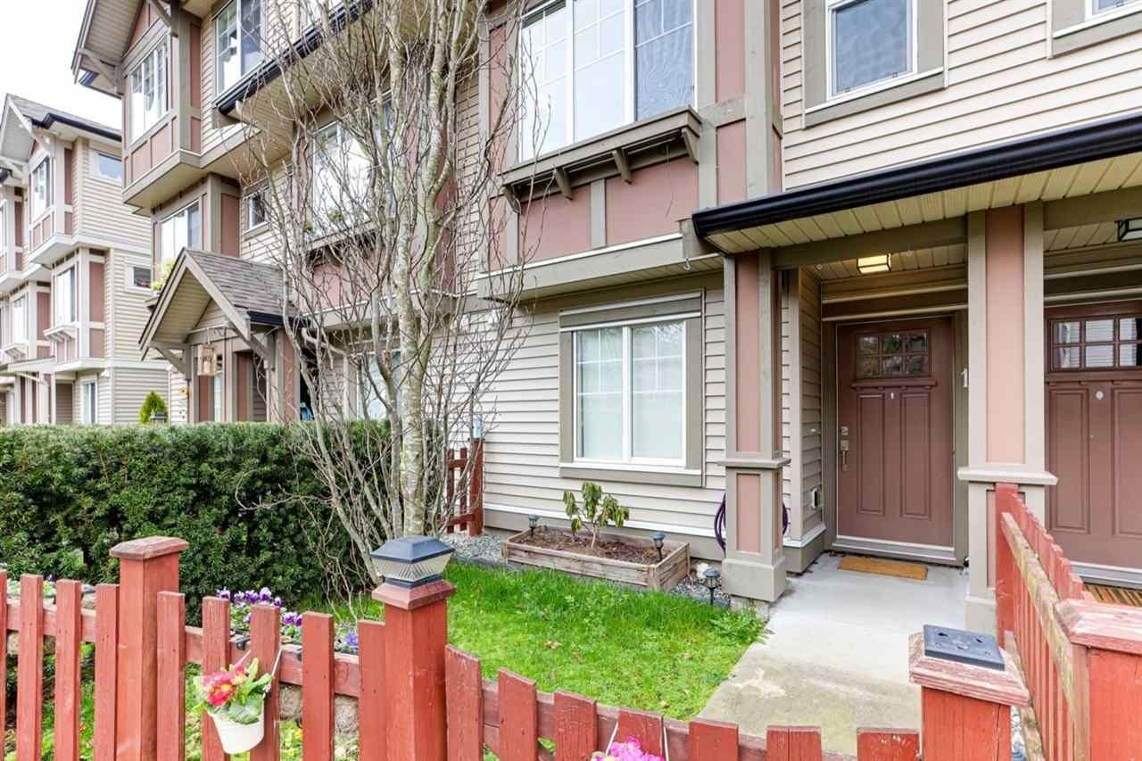 10151-240-street-albion-maple-ridge-02 at 15 - 10151 240 Street, Albion, Maple Ridge