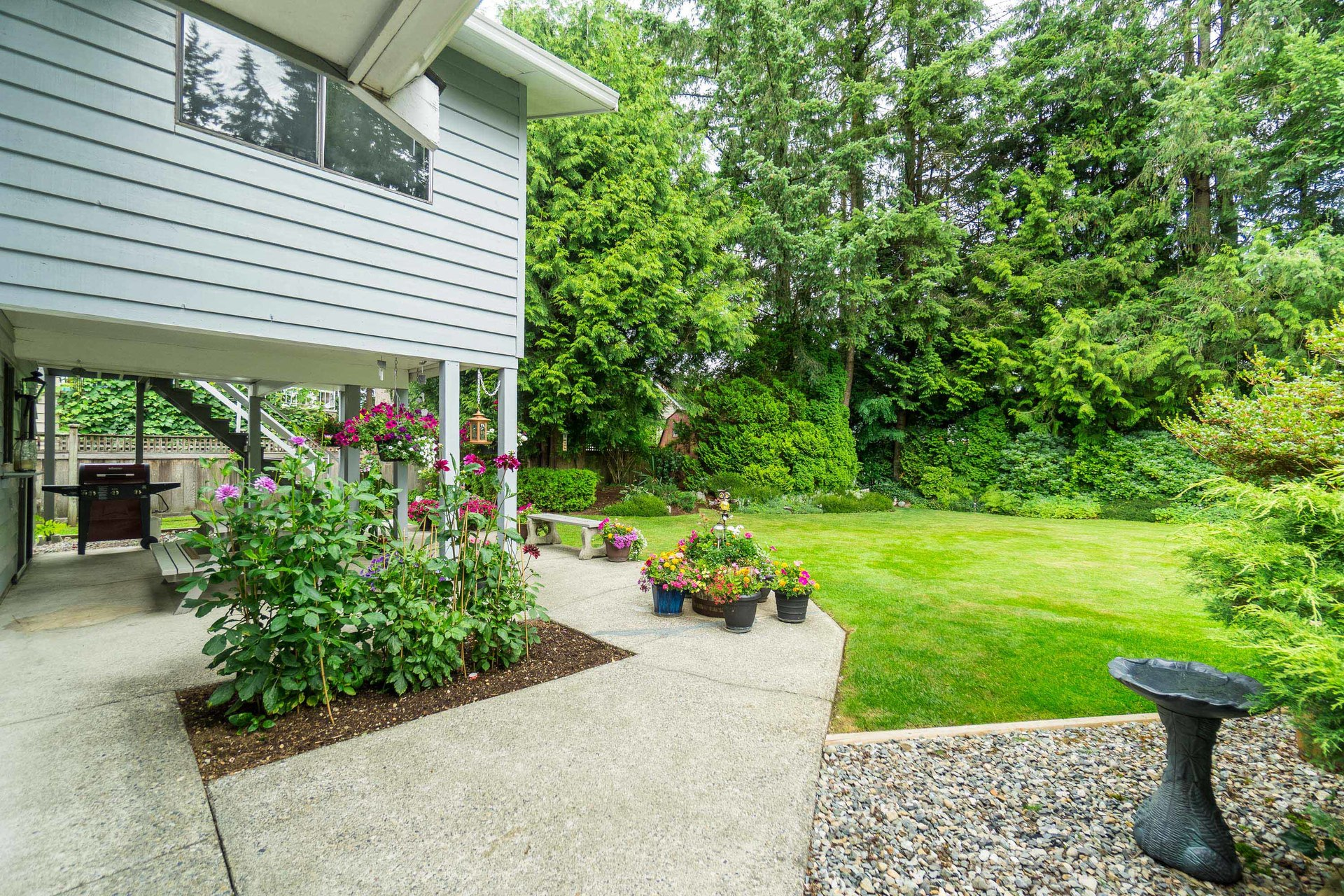 Backyard at 4062 207a Street, Brookswood Langley, Langley