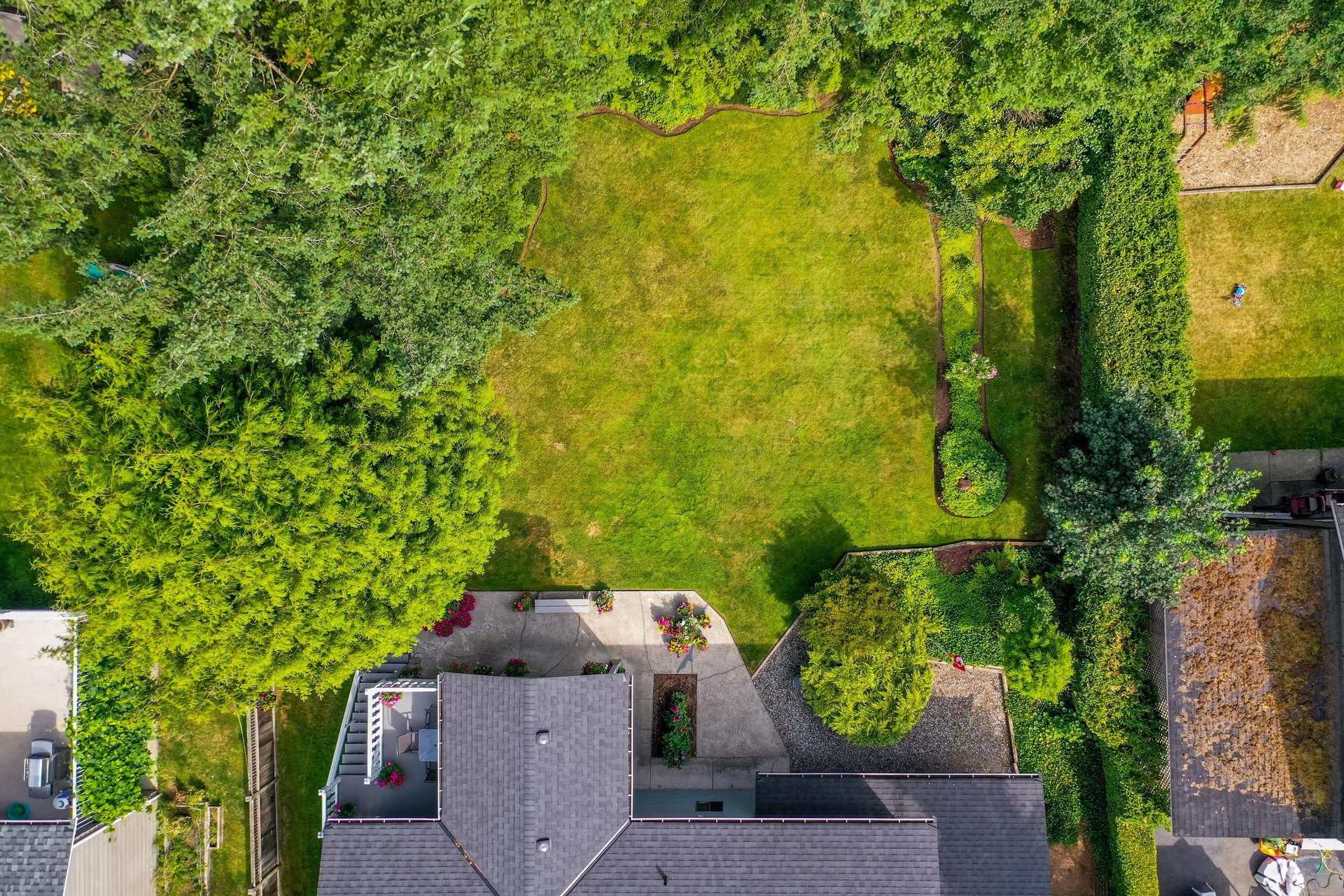 Aerial View - Backyard at 4062 207a Street, Brookswood Langley, Langley