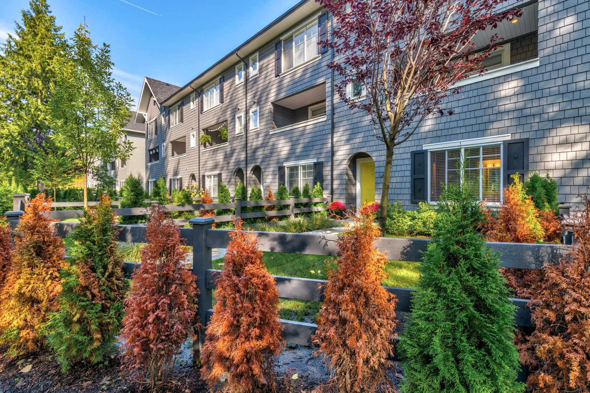 Backyard at 15 - 16357 15 Avenue, King George Corridor, South Surrey White Rock