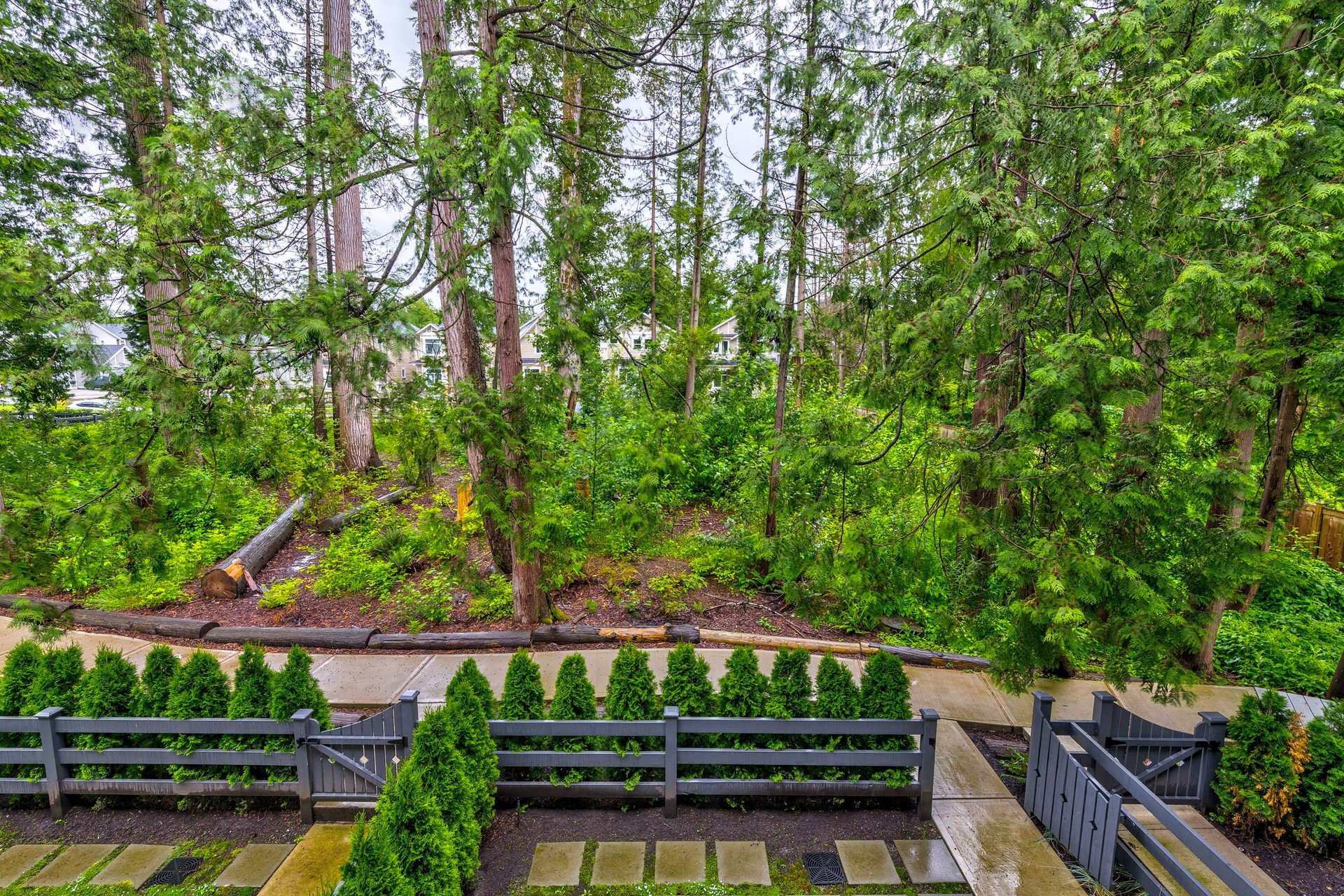 Green Space   at 22 - 127 172 Street, Pacific Douglas, South Surrey White Rock