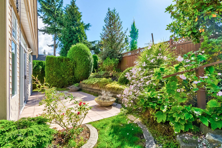 Patio at 26 - 2533 152 Street, Sunnyside Park Surrey, South Surrey White Rock