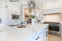 14-premium-appliances at 13156 19a Avenue, Elgin Chantrell, South Surrey White Rock