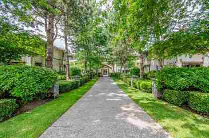 6363-121-street-panorama-ridge-surrey-01 at 207 - 6363 121 Street, Panorama Ridge, Surrey