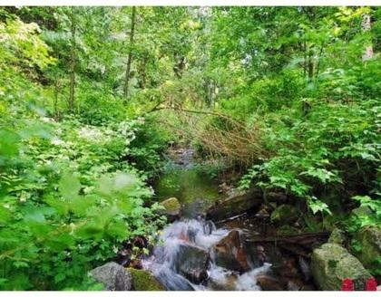 13552-32-avenue-elgin-chantrell-south-surrey-white-rock-06 at 13552 32 Avenue, Elgin Chantrell, South Surrey White Rock
