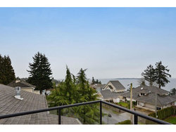 261502052-9 at 13018 Marine Drive, Crescent Bch Ocean Pk., South Surrey White Rock