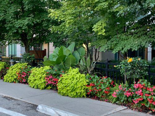 51e16d1a-00a0-4973-8c4d-05bd1fd7af20_1_105_c at #PH808 - 205 The Donway West, Banbury-Don Mills, Toronto
