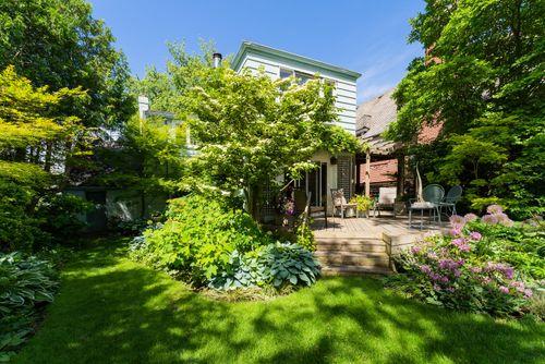 107-ridley-blvd-large-054-047-backyard-1498x1000-72dpi at 107 Ridley Boulevard, Bedford Park-Nortown, Toronto