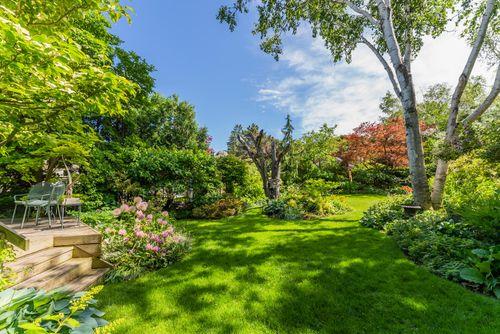 107-ridley-blvd-large-063-048-backyard-1498x1000-72dpi at 107 Ridley Boulevard, Bedford Park-Nortown, Toronto