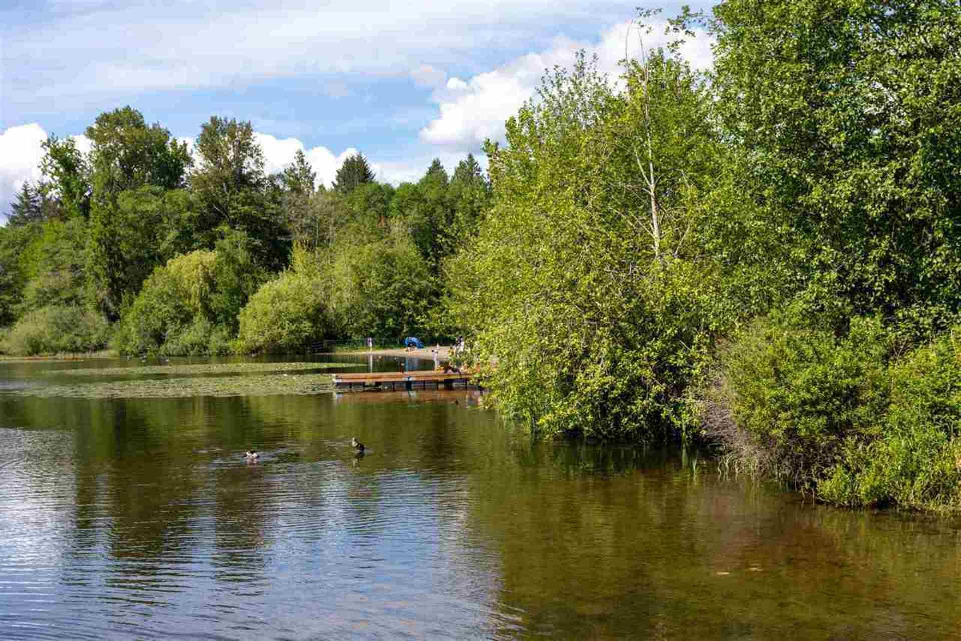 6036-brantford-avenue-upper-deer-lake-burnaby-south-19 at 6036 Brantford Avenue, Upper Deer Lake, Burnaby South