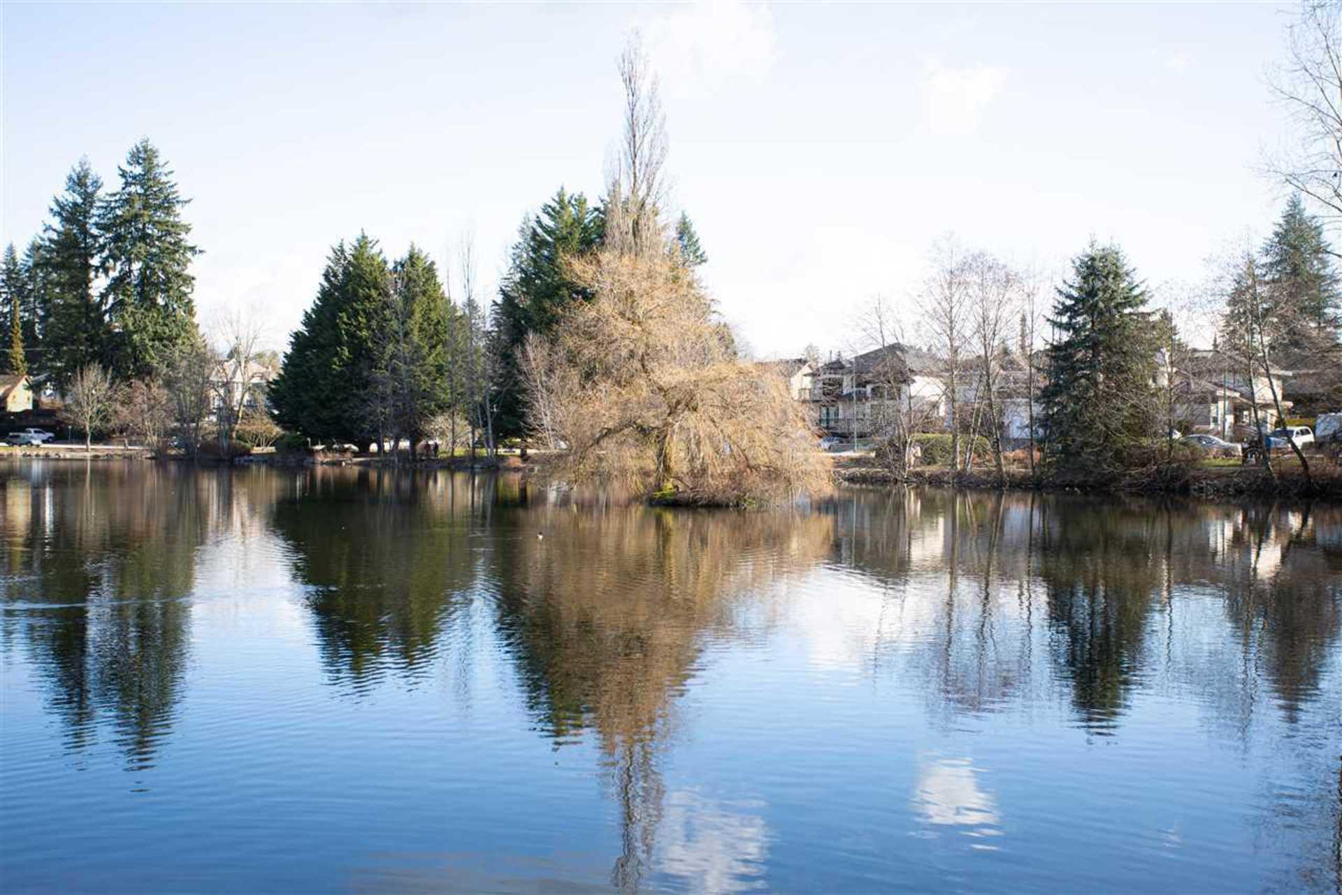 1200-cottonwood-avenue-central-coquitlam-coquitlam-18 at 1200 Cottonwood Avenue, Central Coquitlam, Coquitlam
