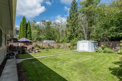Back Yard, Green Space, and Garden Shed at 12220 234 Street, East Central, Maple Ridge