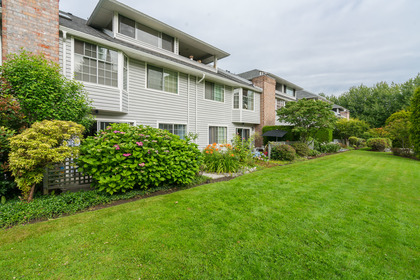 34525_28 at 105 - 11578 225th Street, East Central, Maple Ridge