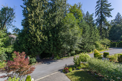 34720_44 at 22803 116th Avenue, East Central, Maple Ridge