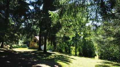 DSC_6959 at 26095 Lougheed Highway, Maple Ridge