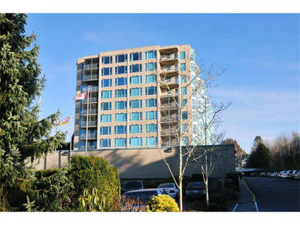 image-262017459-1.jpg at 709 - 12148 224th Street, East Central, Maple Ridge