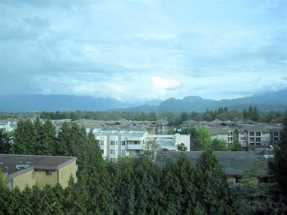 image-262017459-13.jpg at 709 - 12148 224th Street, East Central, Maple Ridge