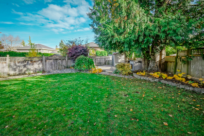 sol09853-2 at 12466 202 A Street, Maple Ridge