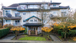 dji_0595sol-denoise at #303 - 20556 113 Avenue, Maple Ridge