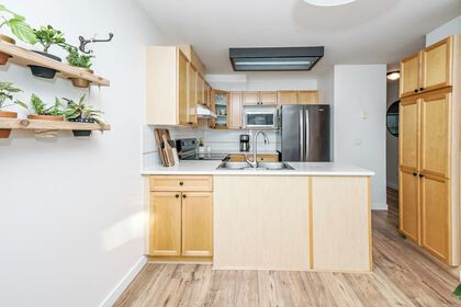 12099-237-street-east-central-maple-ridge-07 at 19 - 12099 237 Street, Maple Ridge